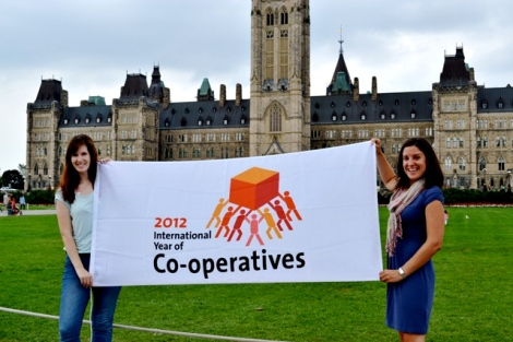 co-operative year 2012